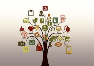 tree-200795_960_720_1024x723
